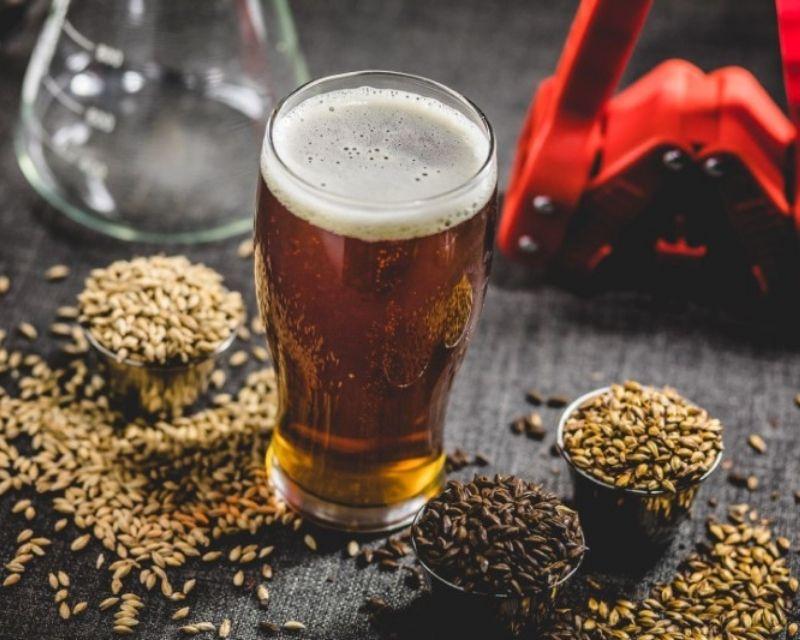 BiaSol Beer Grain